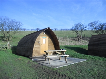 Ten great facts about Humble Bee Farm Wigwams!