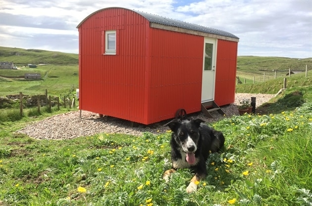 Dog Friendly Shepherds Hut Mangersta