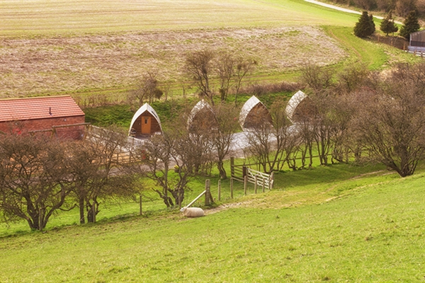 A view of the Humble Bee Wigwams