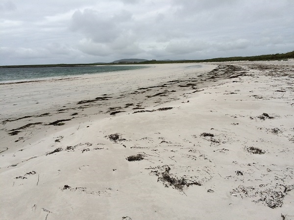 Westray Wigwams