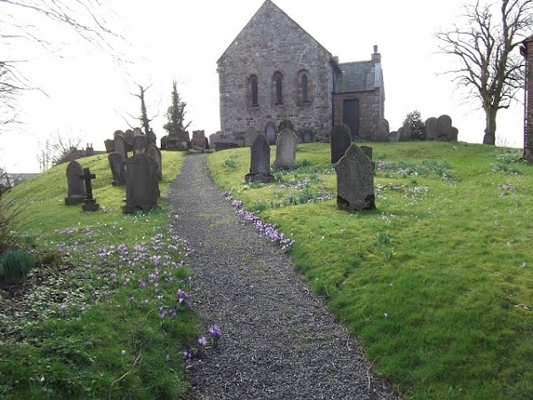 Spring Crocusses at Beaumont Church