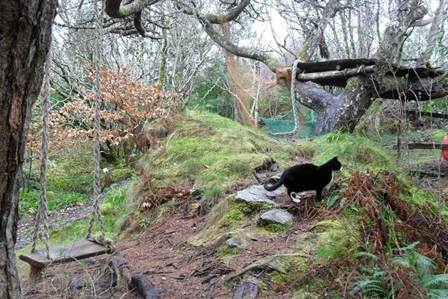 Skye Forest Garden Wigwams