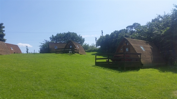 Wigwam Cabins in the sunshine