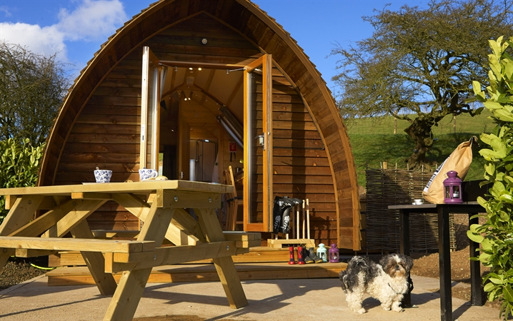 Wigwams are dog friendly!