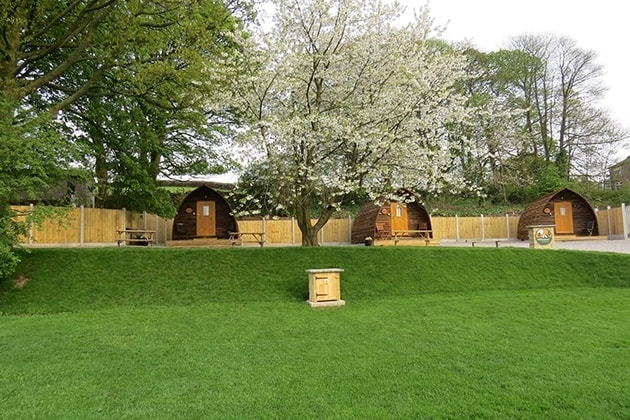 Cherry Blossom Wigwams