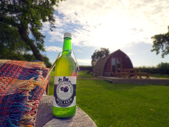 Apple juice from the orchard surrounding wigwams